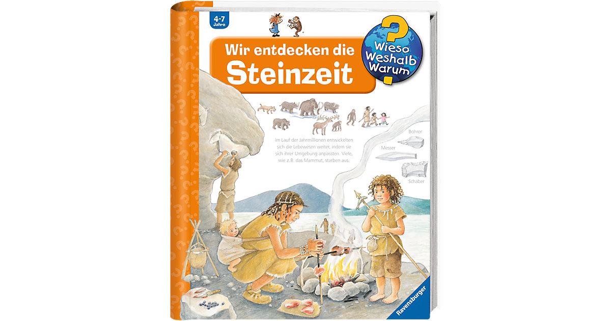 Buch - WWW Wir entdecken die Steinzeit
