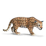 Schleich Wildlife: Jaguar