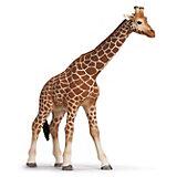 Schleich Wildlife: 14320 Giraffenkuh