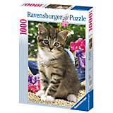 1000 Jigsaw Puzzle: Kittens in the Garden