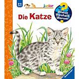 WWW junior Die Katze