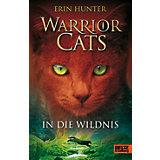 Warrior Cats: In der Wildnis, Band 1
