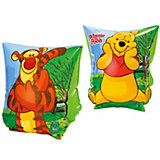 Winnie the Pooh Swimming Aid