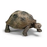 Schleich Wildlife: Giant Tortoise