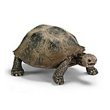 "Schleich Гигантская черепаха. Серия ""Дикие животные"""