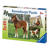 Puzzle Set - 3 x 49 Pieces - Pony Friendship