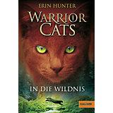 Warrior Cats: In die Wildnis, Band 1