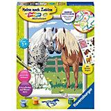 Malen nach Zahlen Pferde - Glückliche Pferde, 18x24 cm