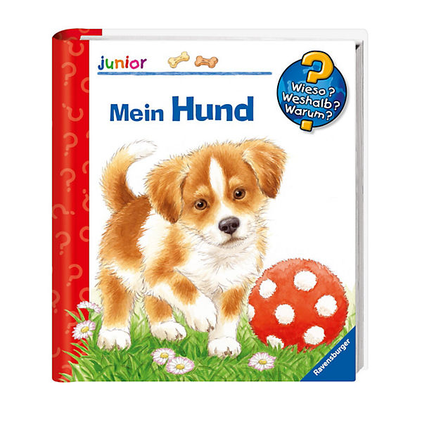 WWW junior Mein Hund
