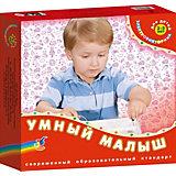 """""""Умный малыш"""" Серия """"Электровикторина"""", Дрофа-Медиа"""