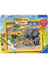 Malen nach Zahlen Serie C - Tiere in Afrika, 24x30 cm
