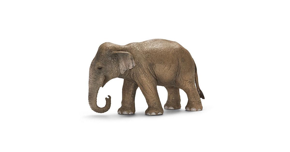 Schleich 14654 Wild Life: Asiatische Elefantenkuh