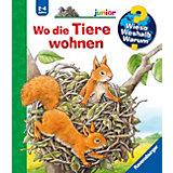 WWW junior Wo die Tiere wohnen