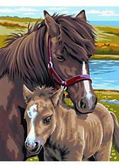 KSG Malen nach Zahlen Masterpiece Twinpack Pferde