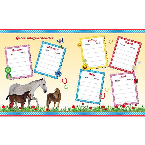 Küchenzauber Panini Verlag ~ pferde, kindergartenfreundebuch, panini verlag my