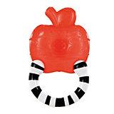 Мягкий прорезыватель для зубок «Полосатое колечко», Яблоко Bright Starts