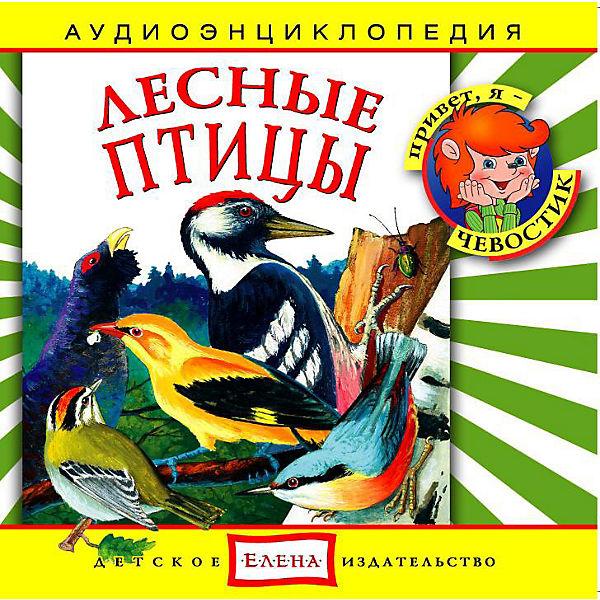"""Аудиоэнциклопедия """"Лесные птицы"""", CD"""