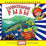 """Аудиоэнциклопедия """"Удивительные рыбы"""", CD"""