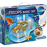 Galileo - Triops Basis Set
