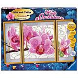 """Malen nach Zahlen Premium - Triptychon """"Wilde Orchidee"""""""