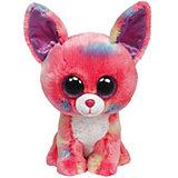 Beanie Boo Chihuahua Duchess, 24 cm