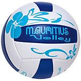"""Мяч волейбольный  """"Мауритиус"""", 200 мм"""
