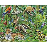 Rahmenpuzzle: Regenwald - 70 Teile