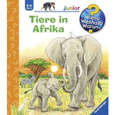 WWW junior: Tiere in Afrika