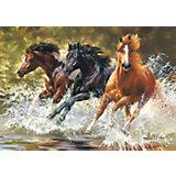 "Пазлы ""Лошади"", 500 деталей, Castorland"