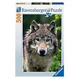 Пазл «Волк» 500 деталей, Ravensburger