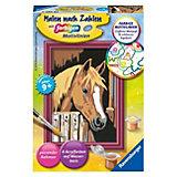 Pferd im Stall - Malen nach Zahlen