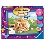 Malen nach Zahlen Kätzchen mit Schmetterling 18 x 13 cm