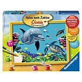 Malen nach Zahlen Delfin mit Schildkröte 24 x 18 cm