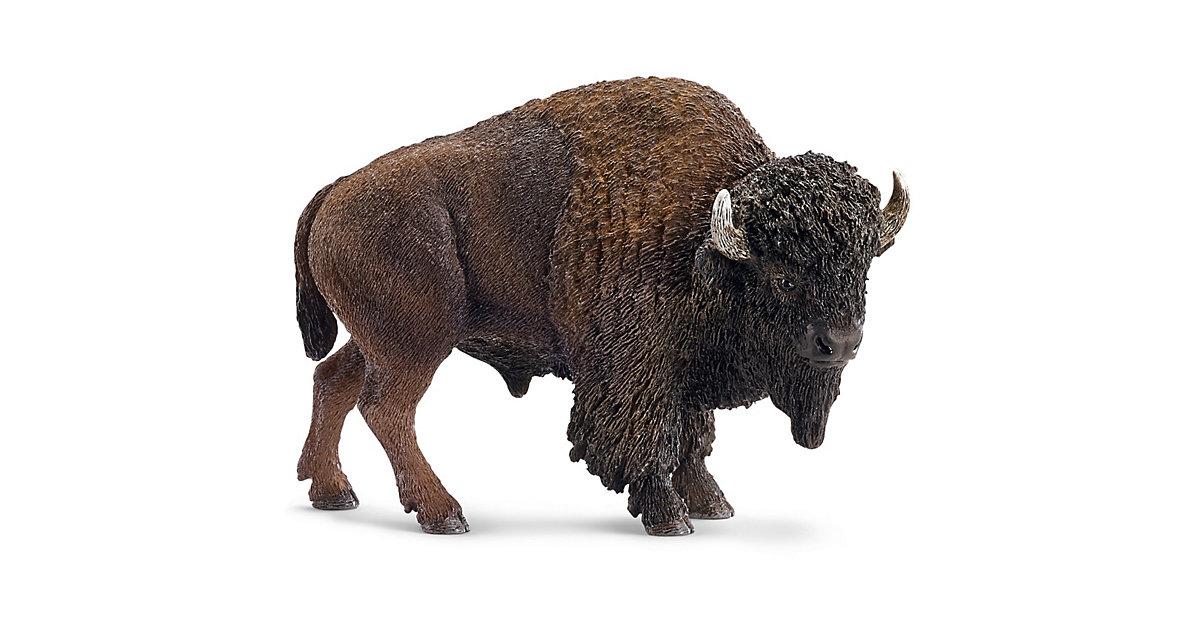 Wildlife: 14714 Bison