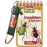 Scout Natur: Insekten und Spinnen