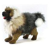Чау-Чау щенок, 30 см ,  Hansa