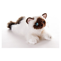 Кошка сиамская, 30см, AURORA