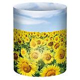 Mini-Tischlichter Sonnenblumenfeld, 10 Stück