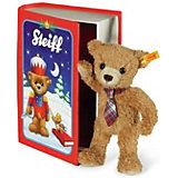 Carlo Teddybär in Märchenbuchbox