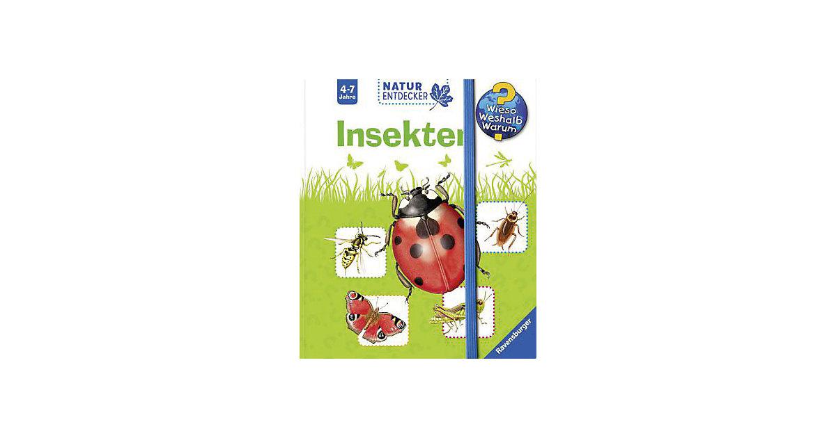 Buch - WWW Naturentdecker: Insekten