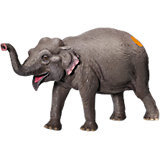 tiptoi® Spielfigur Asiatischer Elefant