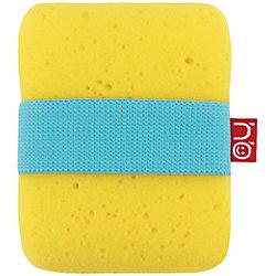 ������� � ���������� ���������� Sponge, Happy Baby, �����