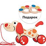 """Игрушка-каталка """"Щенок"""" + подарок: игрушка """"Маракасы"""", Hape"""