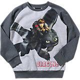 DRAGONS Sweatshirt für Jungen