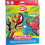 """Набор для творчества """"Тропические птицы"""" (16 предметов), Artberry"""