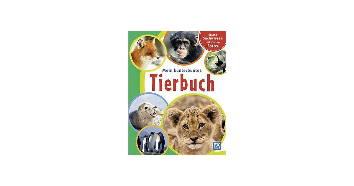 Buch - Mein kunterbuntes Tierbuch