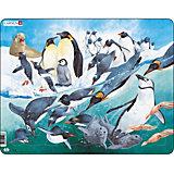 Rahmenpuzzle 50 Teile Pinguine