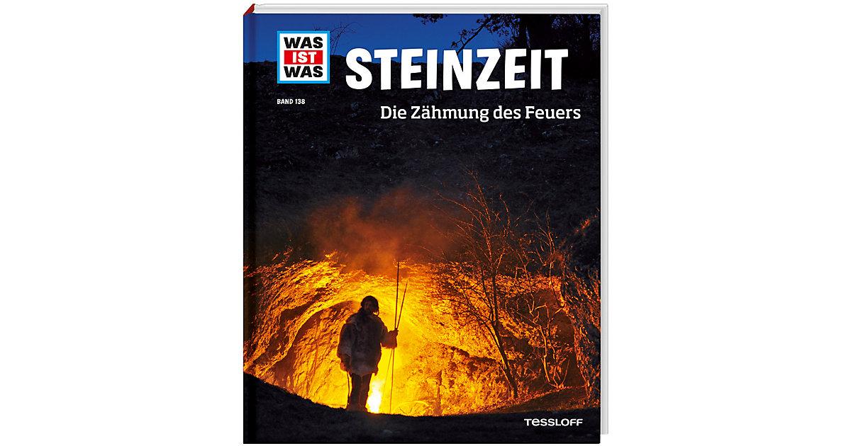 Buch - WAS IST WAS Steinzeit, Teil 138