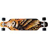"""Streetsurfing® Longboard Freeride 39"""" - Owl"""
