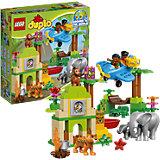 LEGO DUPLO 10804: Вокруг света: Азия